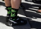 marijuana_socks_washington_011