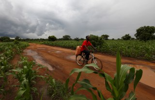 Storm clouds hover as a cyclist rides past a field of maize after late rains near Malawi's capital Lilongwe, February 1, 2016. Late rains in Malawi threaten the staple maize crop and have pushed prices to record highs.About 14 million people face hunger in Southern Africa because of a drought that has been exacerbated by an El Nino weather pattern, according to the United Nations World Food Programme (WFP). REUTERS/Mike Hutchings - RTX24Z7D