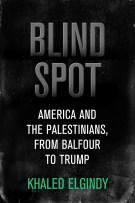 Cover: Blind Spot