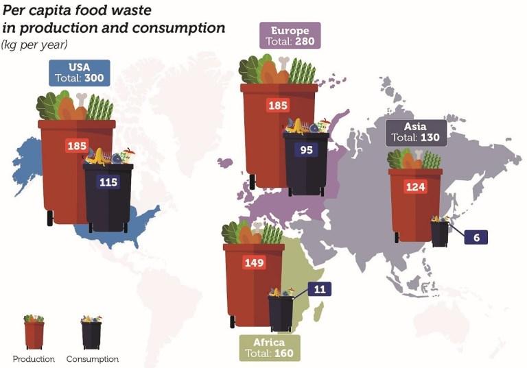 Per capita food waste