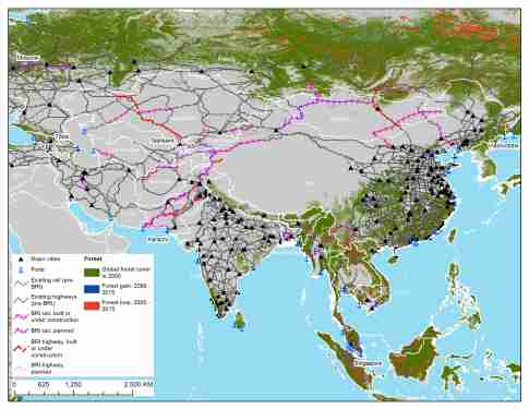Map 1. BRI transport projects and forest cover, loss, and gain