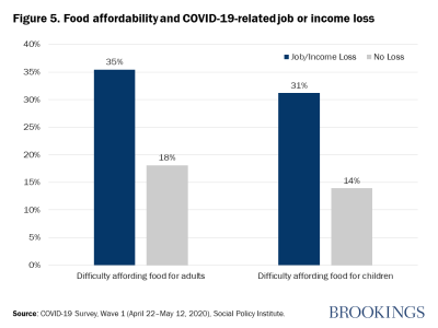 Figure 5. Food affordability and COVID-19-related job or income loss