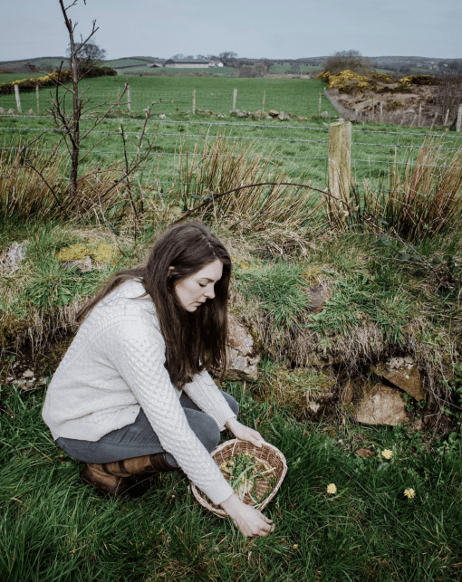 foraging class northern ireland