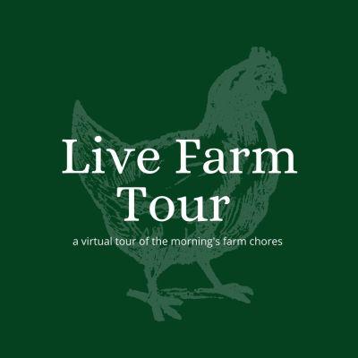 virtual farm tour uk goats pigs chickens zoom farm tour live