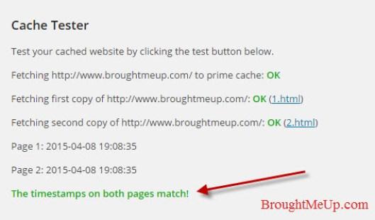 wp super cache working test