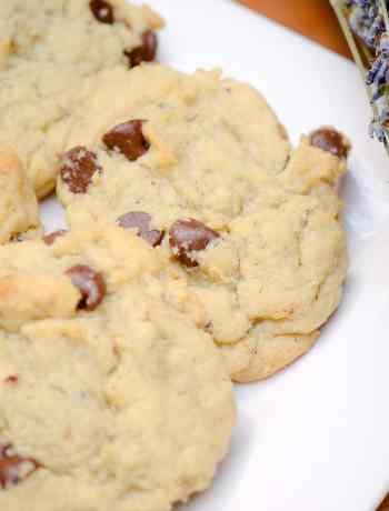 This delicious Lavender Chocolate Chip Cookies recipe is a perfect way to get your house smelling great and enjoy a treat that brings out rich chocolate.