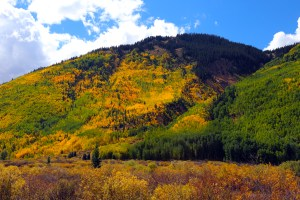 Fall Colors on the Million Dollar Highway, South of Ouray, Montana