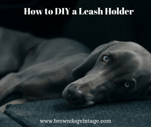 How to DIY a Dog Leash Holder using scrap wood
