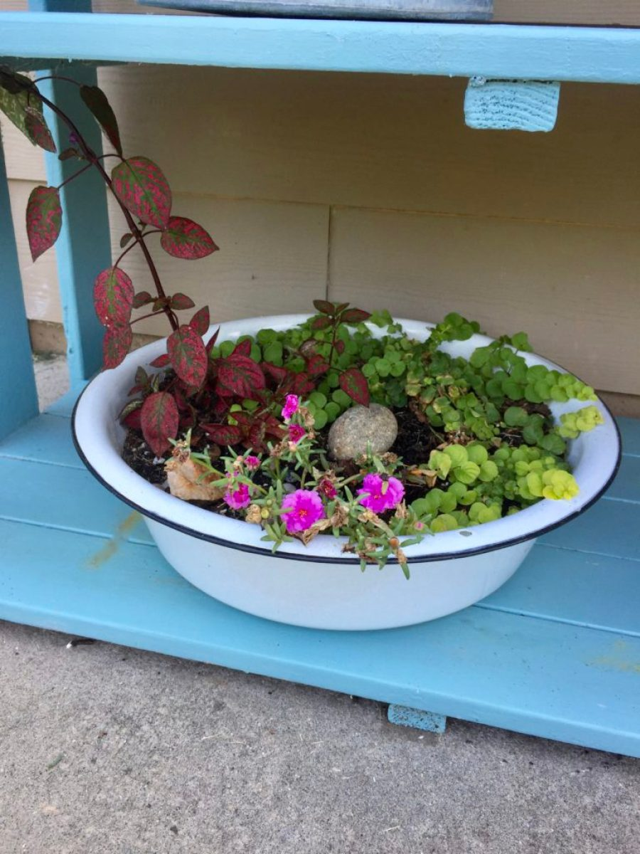 Make your own planter with vintage enamelware for farmhouse style