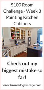 Week 3 Kitchen cabinet makeover
