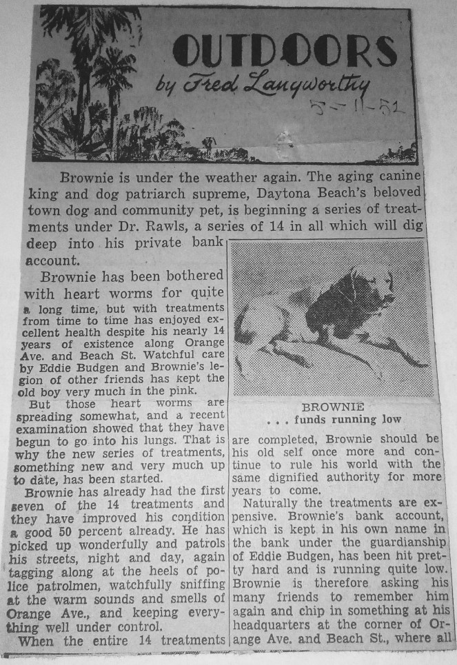 May 11, 1952: Brownie has heart worms again and needs more funds!