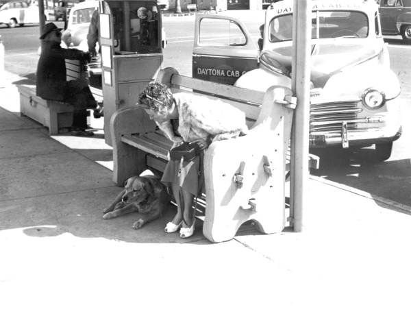 Brownie the Town Dog of Daytona Beach sitting with a tourist in the 50s.