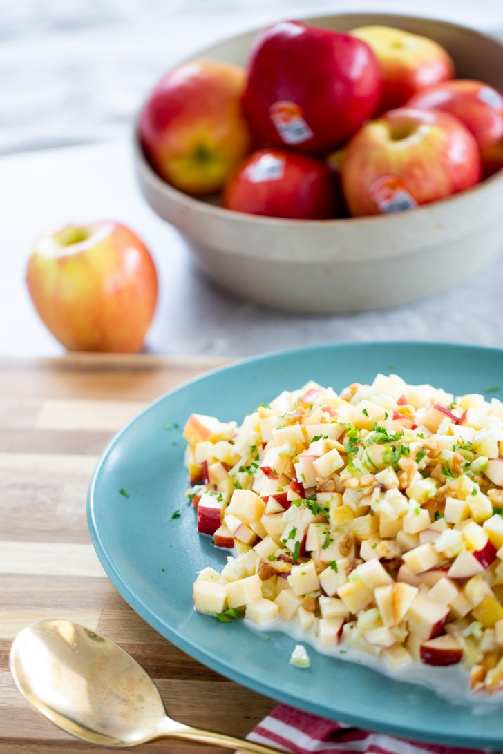 mexican christmas salad with apples on the back
