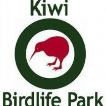 Pateke Captive Breeding Facility - Kiwi Birdlife Park Queenstown