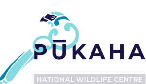 Pateke Captive Breeding Facility - Pukaha (Mt Bruce) National Wildlife Centre
