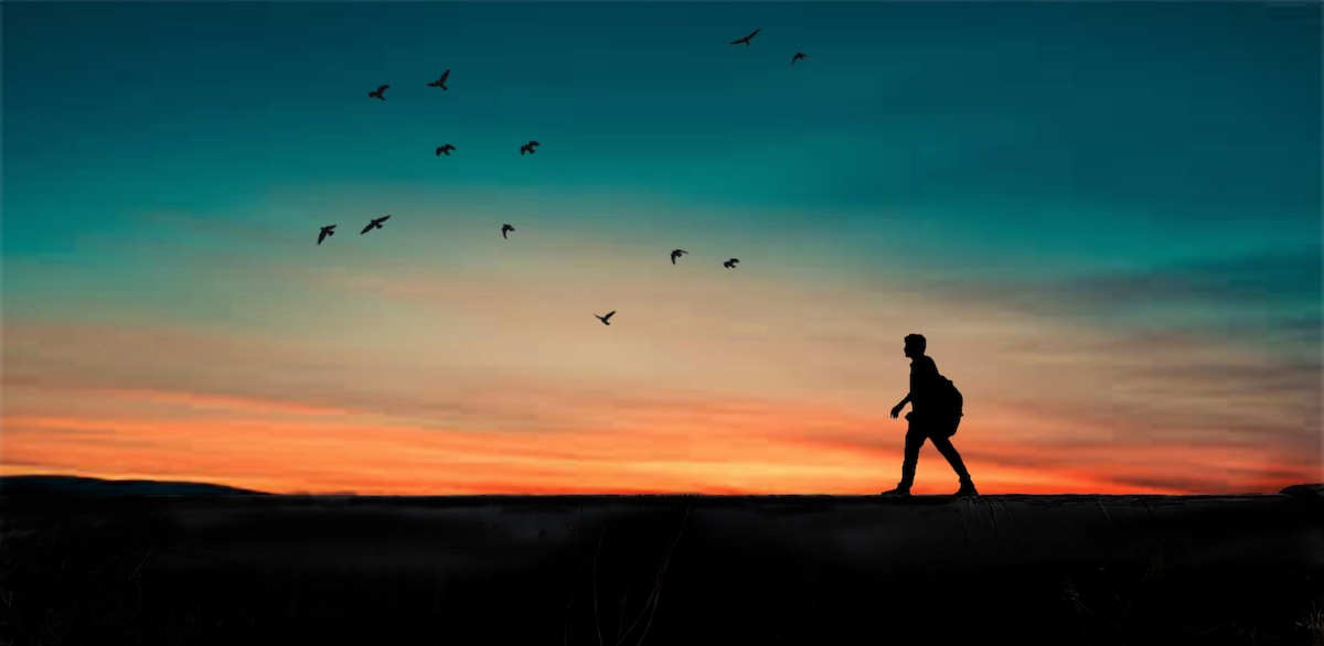 A person walks along a dark ridge silhouetted against a multihued sunset. Overhead a dozen raptors fly