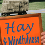Hay-and-Mindfulness