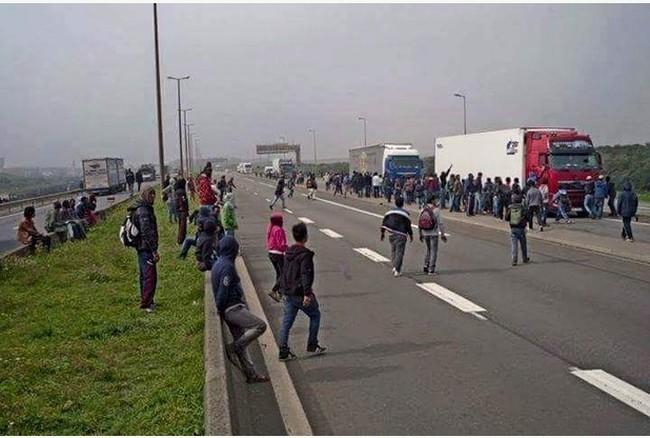 Calais migrants 650