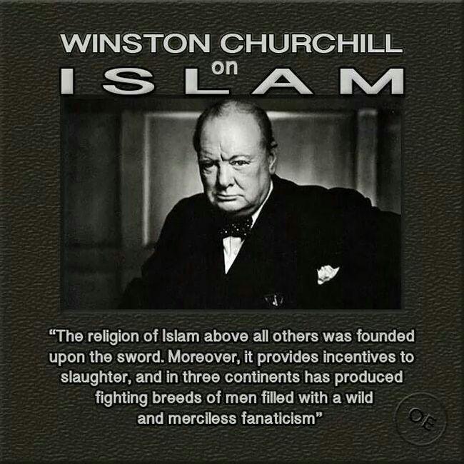 Islam Churchill #3 650