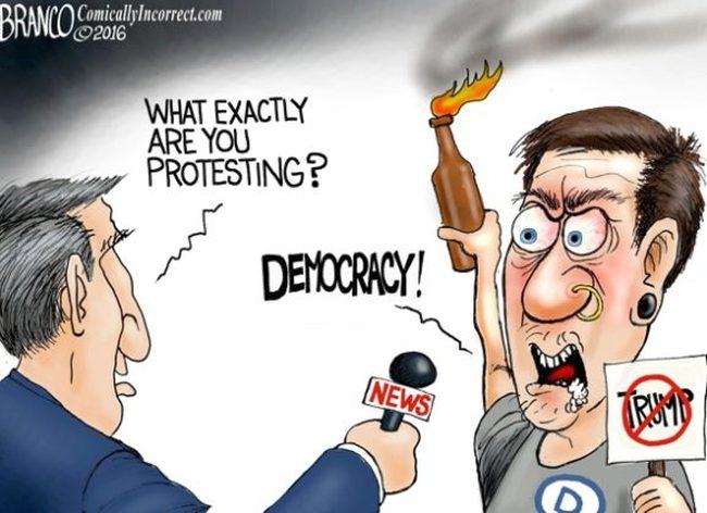 trump-protest-democracy-650