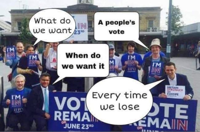 Brexit Bad Loser Memes
