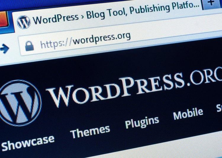 wordpress website1 ss 1920