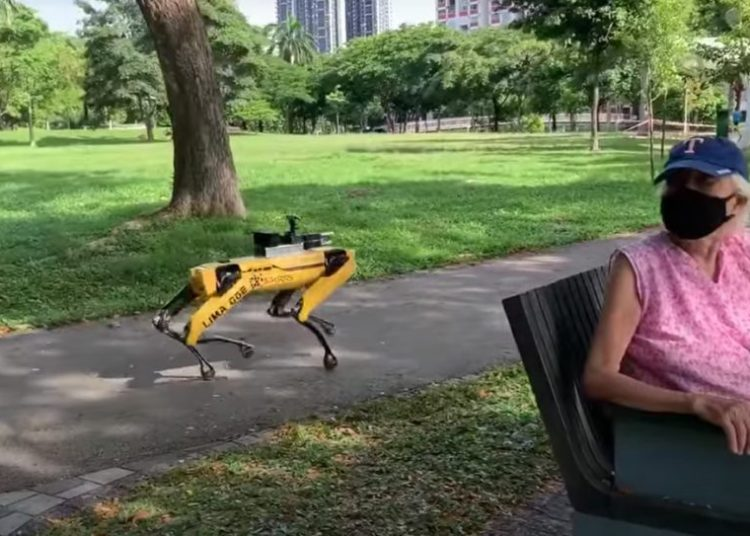 Spot robot trial in Singapore