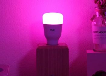 Best smart bulb 2021