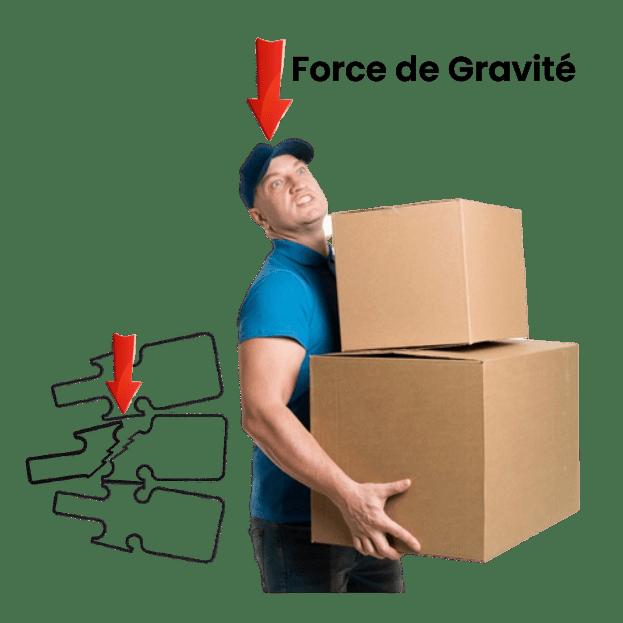 Force de Gravité