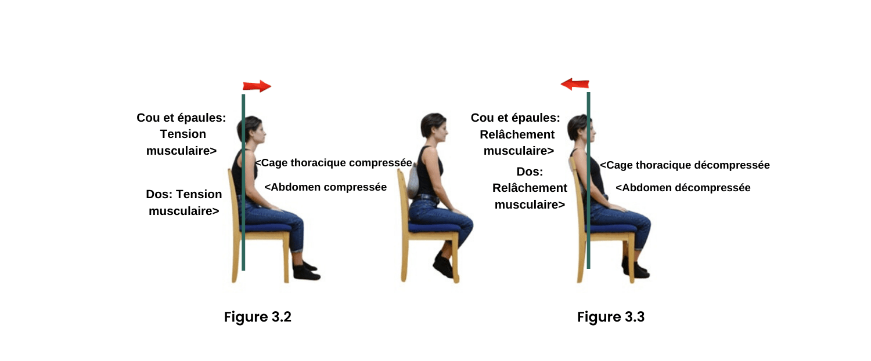 les effets négatifs des dossier plat sur le bas de dos