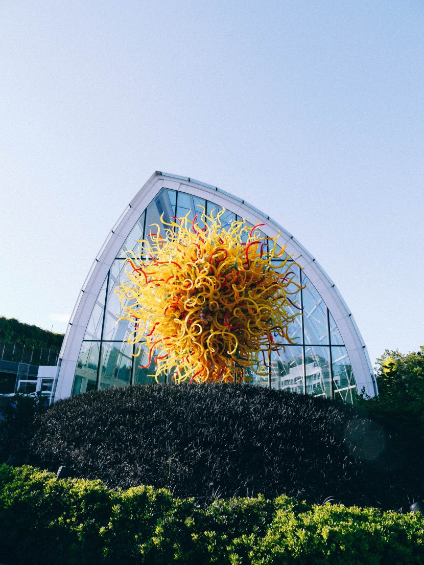 chihuly 55