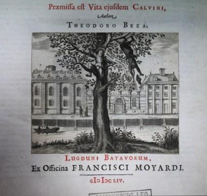 calvino-2