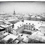 Brno s Dietrichšteinským palácem