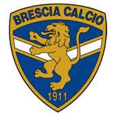 Vorrei vedere il Brescia Calcio fallire