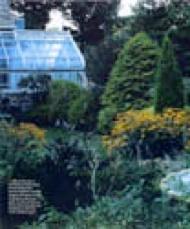 Fine Gardening 9