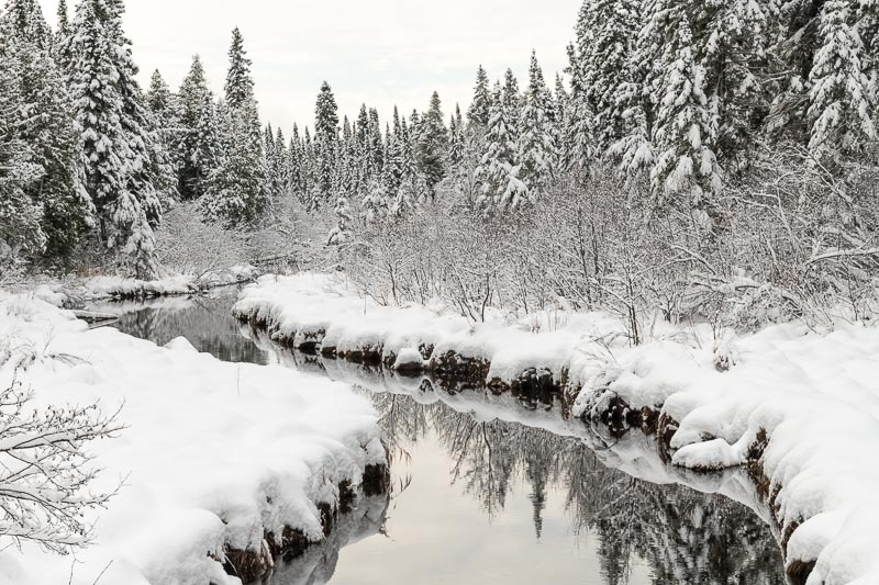 Kadunce River covered in snow