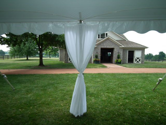 POLE COVER WH WALL DRAPE 8 FOOT Rentals Lexington KY