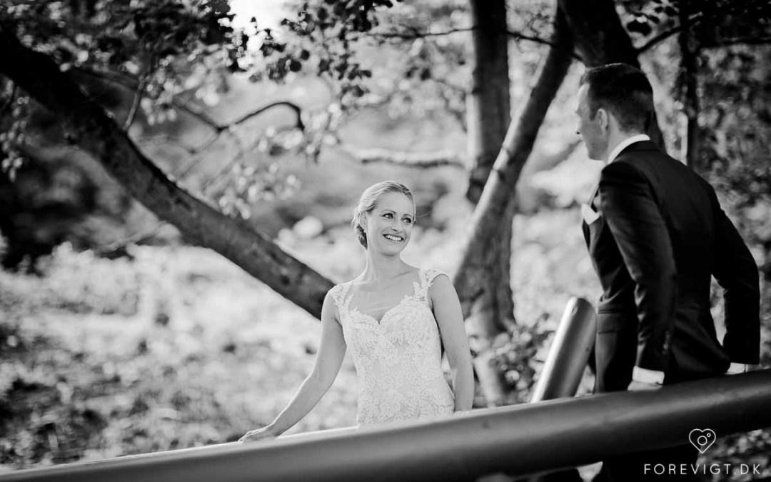 Bryllup – Tips til at planlægge dit bryllup på internettet