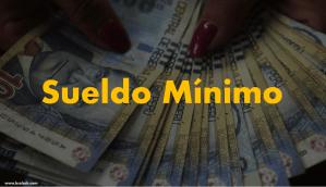 LABORAL: Sueldo mínimo se incrementaría a 1000