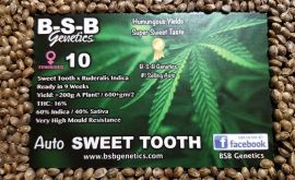 auto sweet tooth seeds poster 001