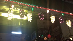 Grape lights from Mulberry Street that I want.