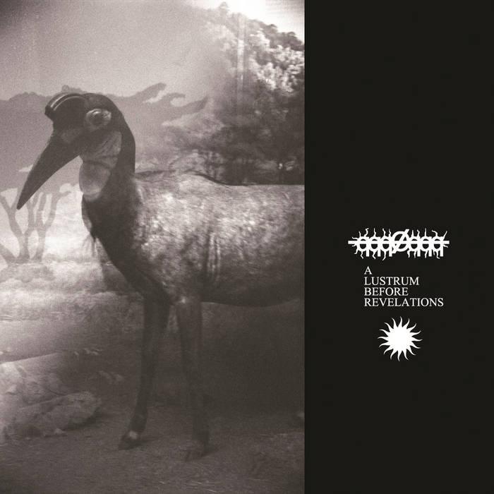 copertina del disco