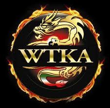 BSKILLED - Psicologia dello sport e della performance WTKA Italia WTKA italia thai boxe psicologia dello sport karate gladys bounous arti marziali