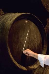O enólogo risca a barrica, indicando um vinho de alta qualidade.