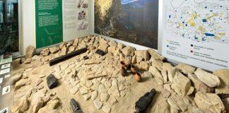 Museo Civico Archeologico della Valtenesi di Manerba del Garda - vetrina riparo - www.bsnews.it
