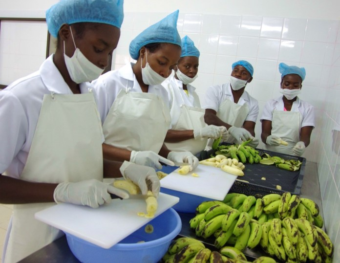 Un'immagine dell'attività di Scaip in Mozambico, foto da ufficio stampa