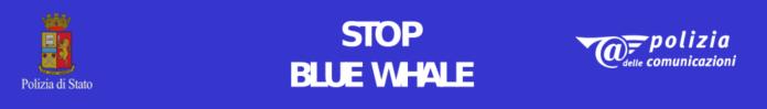 Stop Blue Whale, ferma la Balena blu, il tasto sul sito della Polizia postale