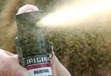 Spray urticante a Brescia