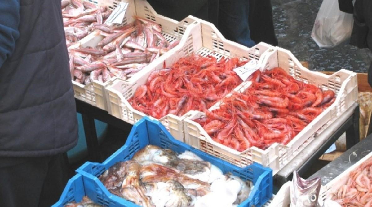 Due Tonnellate Di Pesce Illegale Sotto Accusa Grossisti E