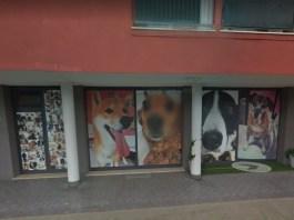Il negozio di toelettatura a Sanpolino